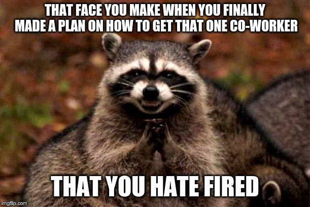 Evil Plotting Raccoon |  THAT FACE YOU MAKE WHEN YOU FINALLY MADE A PLAN ON HOW TO GET THAT ONE CO-WORKER; THAT YOU HATE FIRED | image tagged in memes,evil plotting raccoon | made w/ Imgflip meme maker