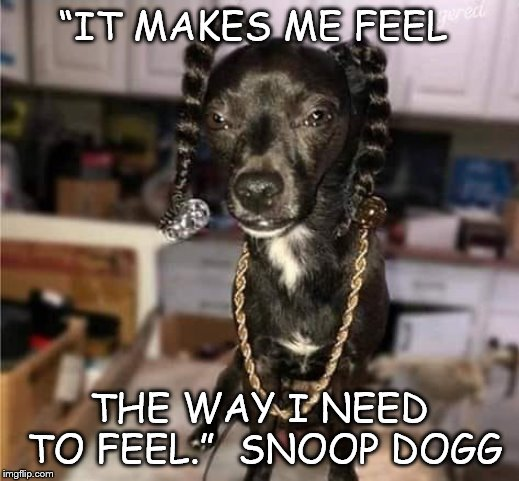 "snoop dogg |  ""IT MAKES ME FEEL; THE WAY I NEED TO FEEL.""  SNOOP DOGG 
