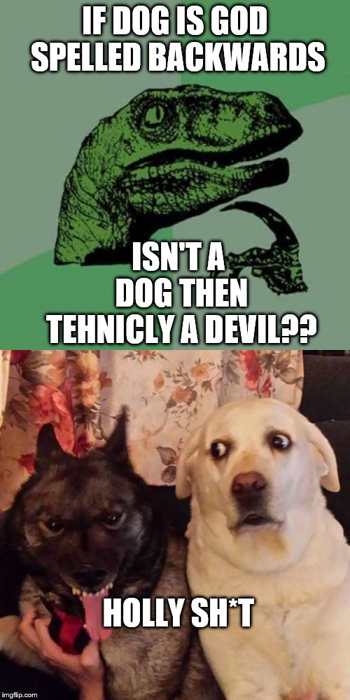 IF DOG IS GOD SPELLED BACKWARDS ISN'T A DOG THEN TEHNICLY A DEVIL?? HOLLY SH*T | image tagged in memes,philosoraptor,worried at evil dog | made w/ Imgflip meme maker