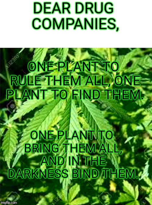 Weed cure | DEAR DRUG COMPANIES, ONE PLANT TO RULE THEM ALL, ONE PLANT TO FIND THEM. ONE PLANT TO BRING THEM ALL, AND IN THE DARKNESS BIND THEM. | image tagged in weed,lotr,green,plants,big pharma,legalize weed | made w/ Imgflip meme maker
