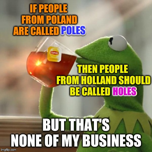 The inconsistencies of the English language never fail to amuse me | IF PEOPLE FROM POLAND ARE CALLED POLES BUT THAT'S NONE OF MY BUSINESS POLES THEN PEOPLE FROM HOLLAND SHOULD BE CALLED HOLES HOLES | image tagged in memes,but thats none of my business,kermit the frog,poland,blaze the blaziken,drinking englishman | made w/ Imgflip meme maker