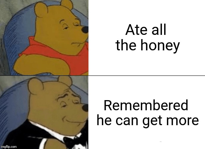 Tuxedo Winnie The Pooh Meme | Ate all the honey Remembered he can get more | image tagged in memes,tuxedo winnie the pooh | made w/ Imgflip meme maker