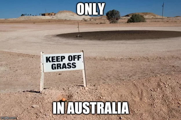 meanwhile in Australia |  ONLY; IN AUSTRALIA | image tagged in meanwhile in australia,australia,grass,memes,dank memes,dust | made w/ Imgflip meme maker