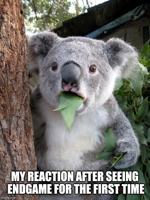 Surprised Koala Meme | MY REACTION AFTER SEEING ENDGAME FOR THE FIRST TIME | image tagged in surprised koala,avengers endgame,marvel,reaction | made w/ Imgflip meme maker