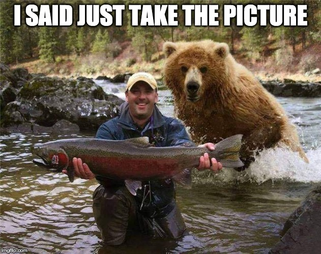 Photo Bombing Bear | I SAID JUST TAKE THE PICTURE | image tagged in fish,bear,sure death | made w/ Imgflip meme maker