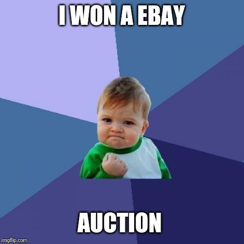 Success Kid Meme | I WON A EBAY AUCTION | image tagged in memes,success kid | made w/ Imgflip meme maker