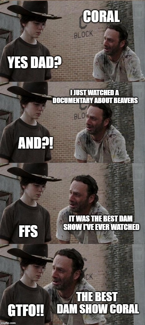 Dam Rick | CORAL YES DAD? I JUST WATCHED A DOCUMENTARY ABOUT BEAVERS AND?! IT WAS THE BEST DAM SHOW I'VE EVER WATCHED FFS THE BEST DAM SHOW CORAL GTFO! | image tagged in memes,rick and carl long,dad joke,damn,the walking dead coral,beaver | made w/ Imgflip meme maker