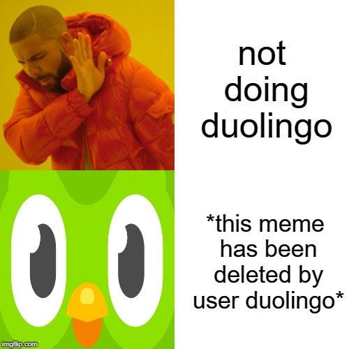 duolingo deletes your memes | not doing duolingo *this meme has been deleted by user duolingo* | image tagged in memes,drake hotline bling,duolingo | made w/ Imgflip meme maker