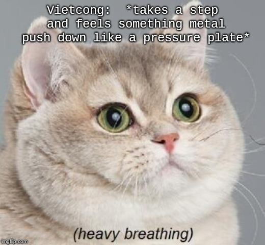Heavy Breathing Cat Meme | Vietcong:  *takes a step and feels something metal push down like a pressure plate* | image tagged in memes,heavy breathing cat | made w/ Imgflip meme maker