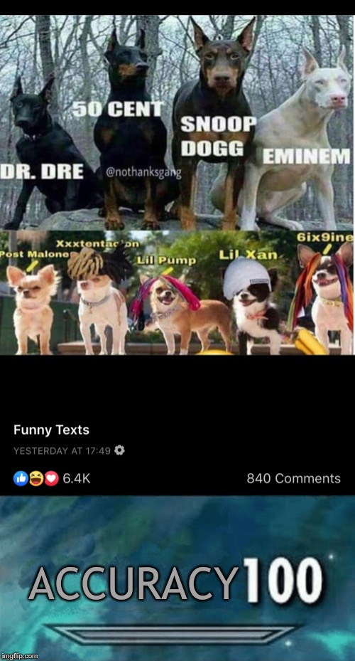 Who knew Facebook could be so good? |  ACCURACY | image tagged in memes,skyrim,hip hop,post malone,eminem,xxxtentacion | made w/ Imgflip meme maker
