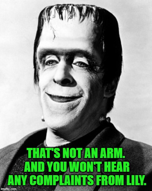 herman munster  | THAT'S NOT AN ARM. AND YOU WON'T HEAR ANY COMPLAINTS FROM LILY. | image tagged in herman munster | made w/ Imgflip meme maker