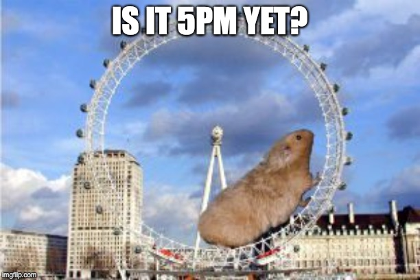 Giant Hamster Wheel | IS IT 5PM YET? | image tagged in giant hamster wheel | made w/ Imgflip meme maker