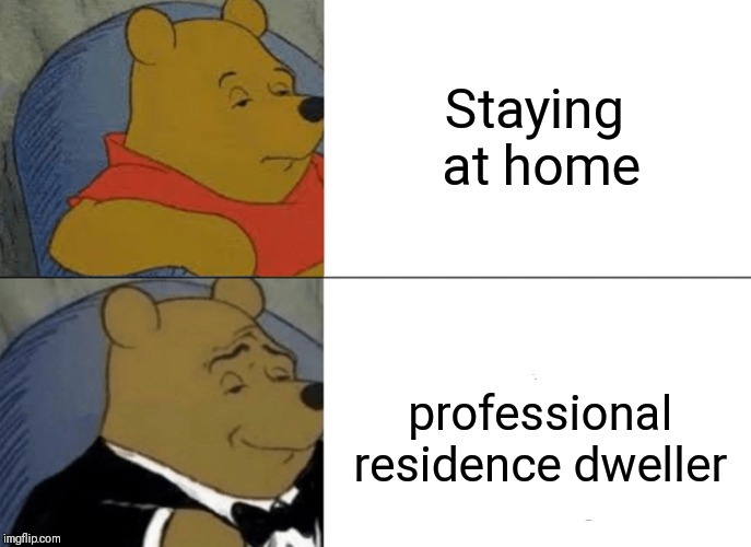 Tuxedo Winnie The Pooh Meme | Staying at home . professional residence dweller | image tagged in memes,tuxedo winnie the pooh | made w/ Imgflip meme maker