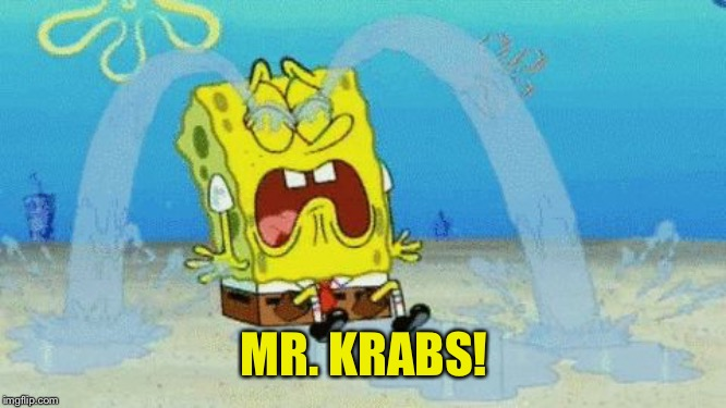 Spongebob crying | MR. KRABS! | image tagged in spongebob crying | made w/ Imgflip meme maker