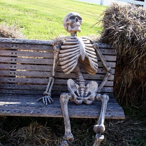 skeleton waiting in a bench Blank Template - Imgflip
