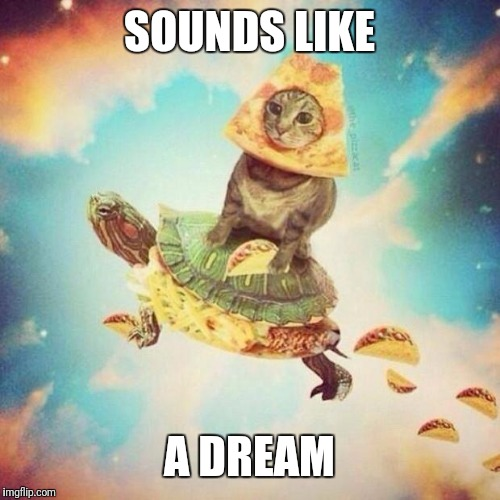 Space Pizza Cat Turtle Tacos | SOUNDS LIKE A DREAM | image tagged in space pizza cat turtle tacos | made w/ Imgflip meme maker