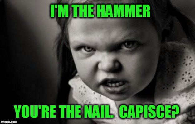 Got It? | I'M THE HAMMER YOU'RE THE NAIL.  CAPISCE? | image tagged in alice malice | made w/ Imgflip meme maker