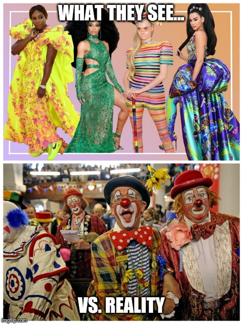 clown art |  WHAT THEY SEE... VS. REALITY | image tagged in funny,clowns | made w/ Imgflip meme maker