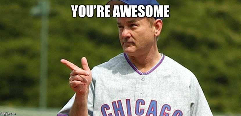 chicago cubs bill murray | YOU'RE AWESOME | image tagged in chicago cubs bill murray | made w/ Imgflip meme maker