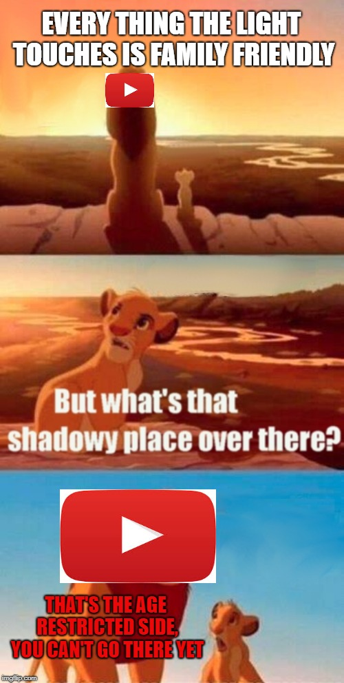 YouTube in a nut shell | EVERY THING THE LIGHT TOUCHES IS FAMILY FRIENDLY THAT'S THE AGE RESTRICTED SIDE, YOU CAN'T GO THERE YET | image tagged in memes,simba shadowy place | made w/ Imgflip meme maker