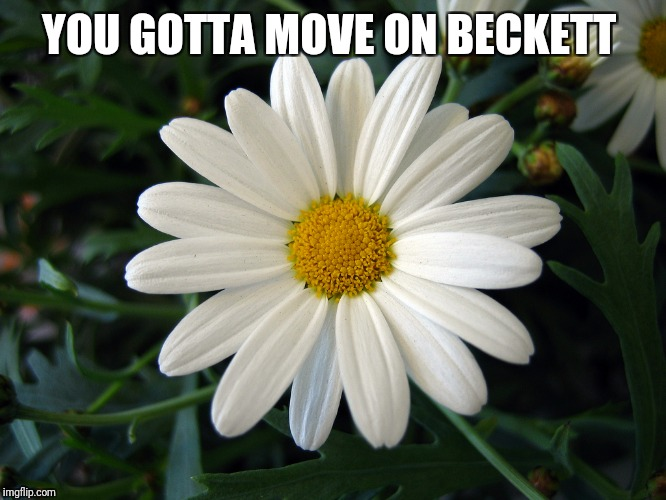 Daisy | YOU GOTTA MOVE ON BECKETT | image tagged in daisy | made w/ Imgflip meme maker