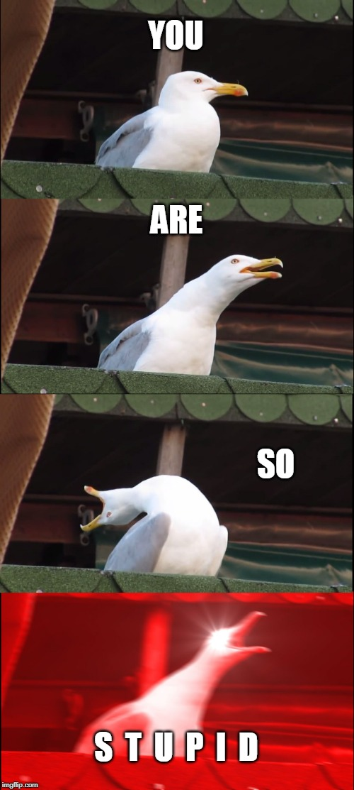 Inhaling Seagull Meme | YOU ARE SO S  T  U  P  I  D | image tagged in memes,inhaling seagull | made w/ Imgflip meme maker