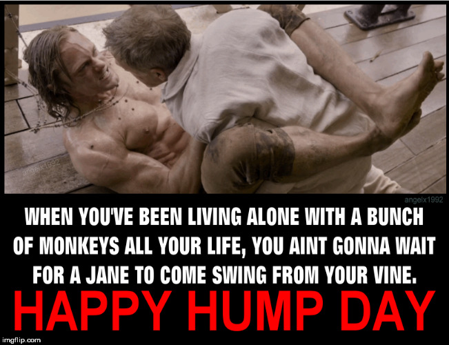 image tagged in tarzan,hump day,action movies,monkeys,wednesday,humpday | made w/ Imgflip meme maker