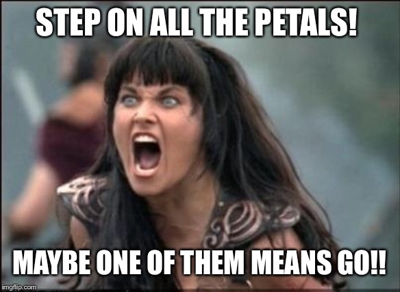Angry Xena | STEP ON ALL THE PETALS! MAYBE ONE OF THEM MEANS GO!! | image tagged in angry xena | made w/ Imgflip meme maker