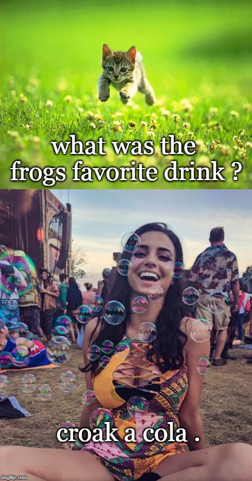 feeling froggy or bubbley,have a jolly day. | what was the frogs favorite drink ? croak a cola . | image tagged in kitten,bubbly babe,bad pun,meme fun | made w/ Imgflip meme maker