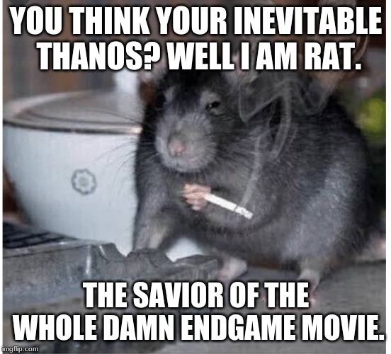 YOU THINK YOUR INEVITABLE THANOS? WELL I AM RAT. THE SAVIOR OF THE WHOLE DAMN ENDGAME MOVIE. | image tagged in mcus rat of destiny | made w/ Imgflip meme maker