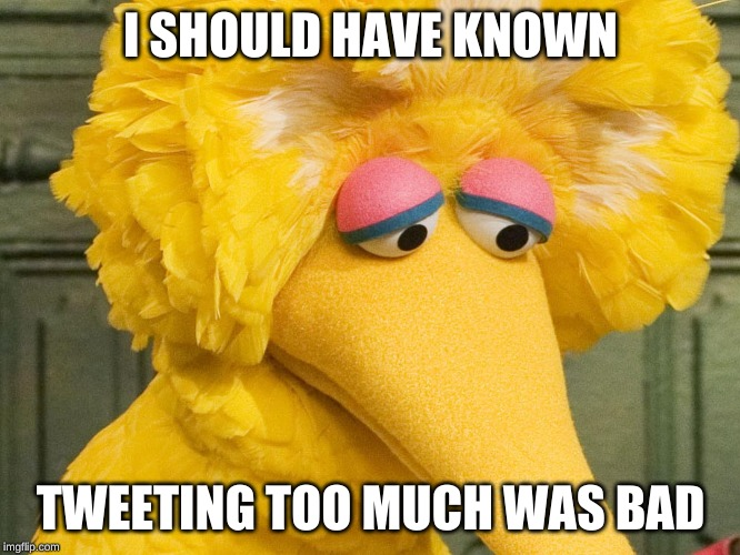 Sad Big Bird | I SHOULD HAVE KNOWN TWEETING TOO MUCH WAS BAD | image tagged in sad big bird | made w/ Imgflip meme maker