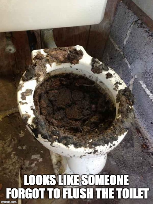 toilet | LOOKS LIKE SOMEONE FORGOT TO FLUSH THE TOILET | image tagged in toilet | made w/ Imgflip meme maker