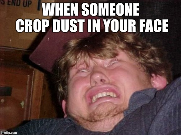 WTF |  WHEN SOMEONE CROP DUST IN YOUR FACE | image tagged in memes,wtf | made w/ Imgflip meme maker