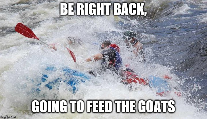 Rafting |  BE RIGHT BACK, GOING TO FEED THE GOATS | image tagged in rafting | made w/ Imgflip meme maker