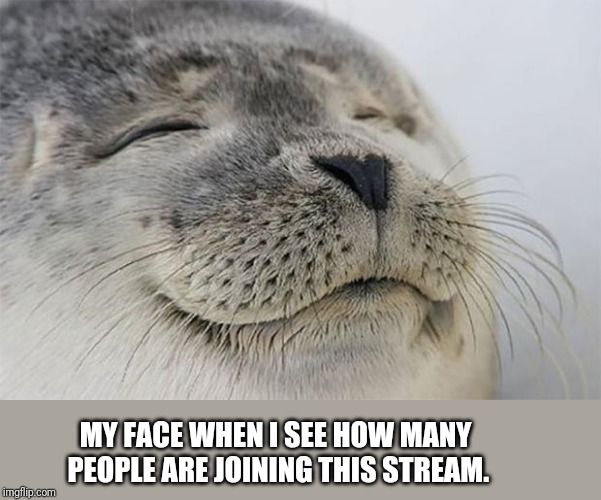 Great to see so many internet faces! | MY FACE WHEN I SEE HOW MANY PEOPLE ARE JOINING THIS STREAM. | image tagged in memes,satisfied seal,stream | made w/ Imgflip meme maker