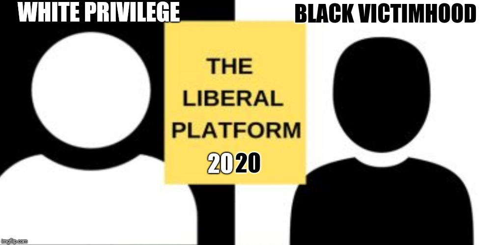 Libtards Go Away | WHITE PRIVILEGE BLACK VICTIMHOOD 20 20 | image tagged in new,libtards | made w/ Imgflip meme maker