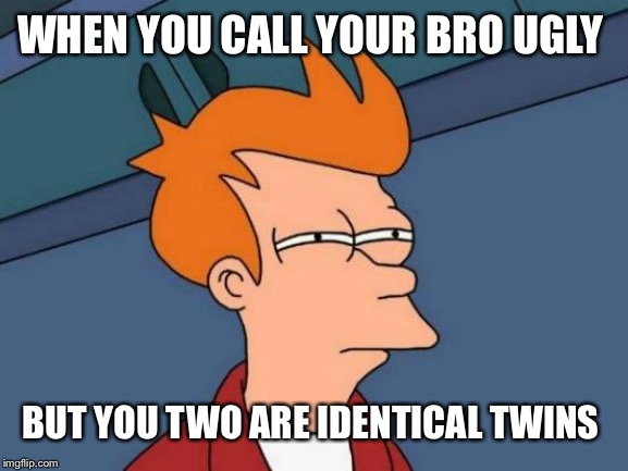 Futurama Fry Meme | WHEN YOU CALL YOUR BRO UGLY BUT YOU TWO ARE IDENTICAL TWINS | image tagged in memes,futurama fry | made w/ Imgflip meme maker