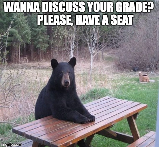 Office Hours at College | WANNA DISCUSS YOUR GRADE?      PLEASE, HAVE A SEAT | image tagged in black bear,teachers,professors,grades,education,students | made w/ Imgflip meme maker