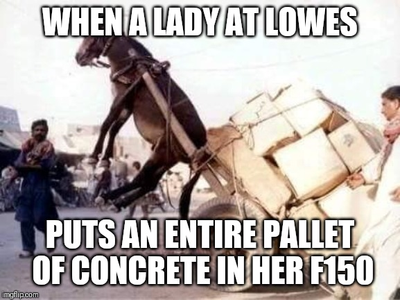 Mustang wheelie | WHEN A LADY AT LOWES PUTS AN ENTIRE PALLET OF CONCRETE IN HER F150 | image tagged in ford,lady,trucks,fail | made w/ Imgflip meme maker