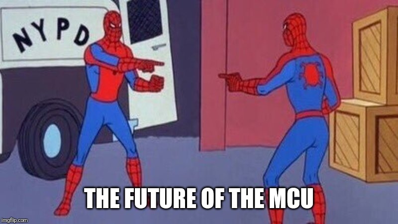 spiderman pointing at spiderman | THE FUTURE OF THE MCU | image tagged in spiderman pointing at spiderman,mcu,phase 4,spideyverse | made w/ Imgflip meme maker