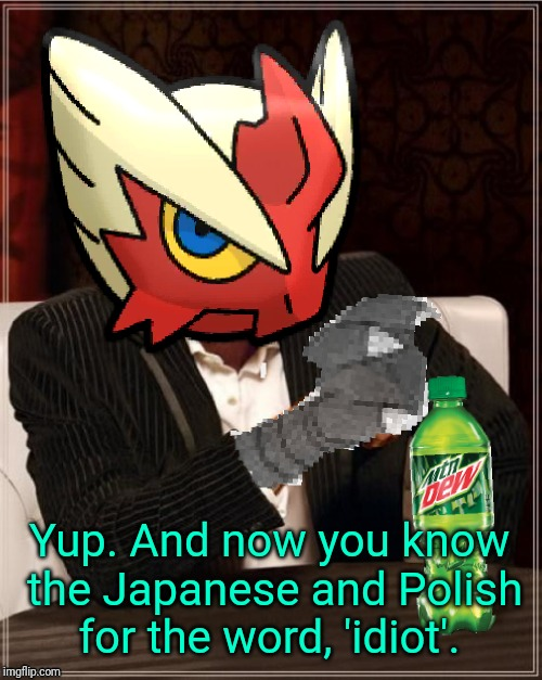Most Interesting Blaziken in Hoenn | Yup. And now you know the Japanese and Polish for the word, 'idiot'. | image tagged in most interesting blaziken in hoenn | made w/ Imgflip meme maker