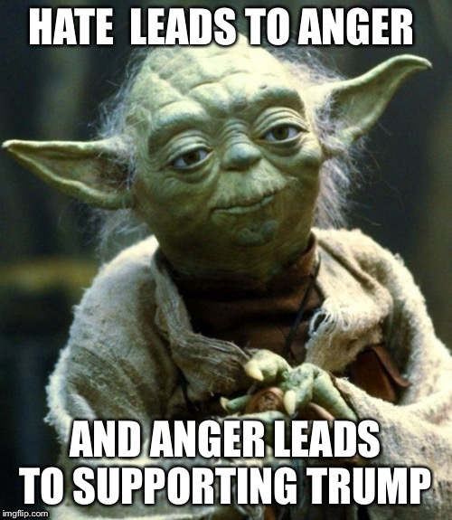 image tagged in funny,star wars yoda,yoda,donald trump,hate | made w/ Imgflip meme maker