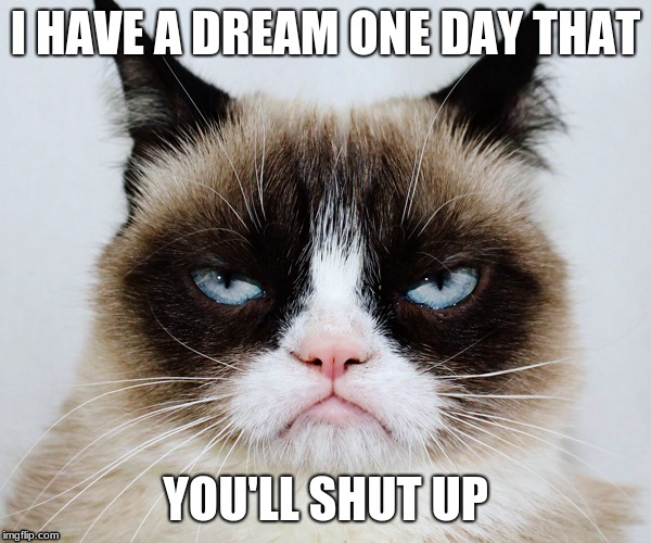 Grumpy Cat moty | I HAVE A DREAM ONE DAY THAT YOU'LL SHUT UP | image tagged in grumpy cat,funny memes | made w/ Imgflip meme maker