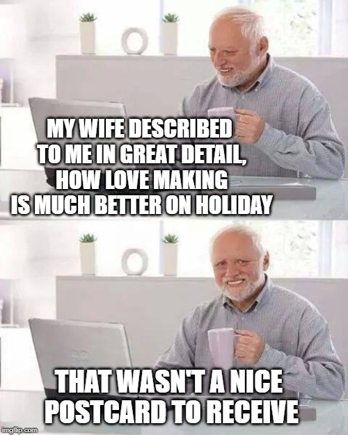 You know what on the beach | MY WIFE DESCRIBED TO ME IN GREAT DETAIL, HOW LOVE MAKING IS MUCH BETTER ON HOLIDAY THAT WASN'T A NICE POSTCARD TO RECEIVE | image tagged in memes,hide the pain harold,wife,bragging,happy holidays,harold | made w/ Imgflip meme maker