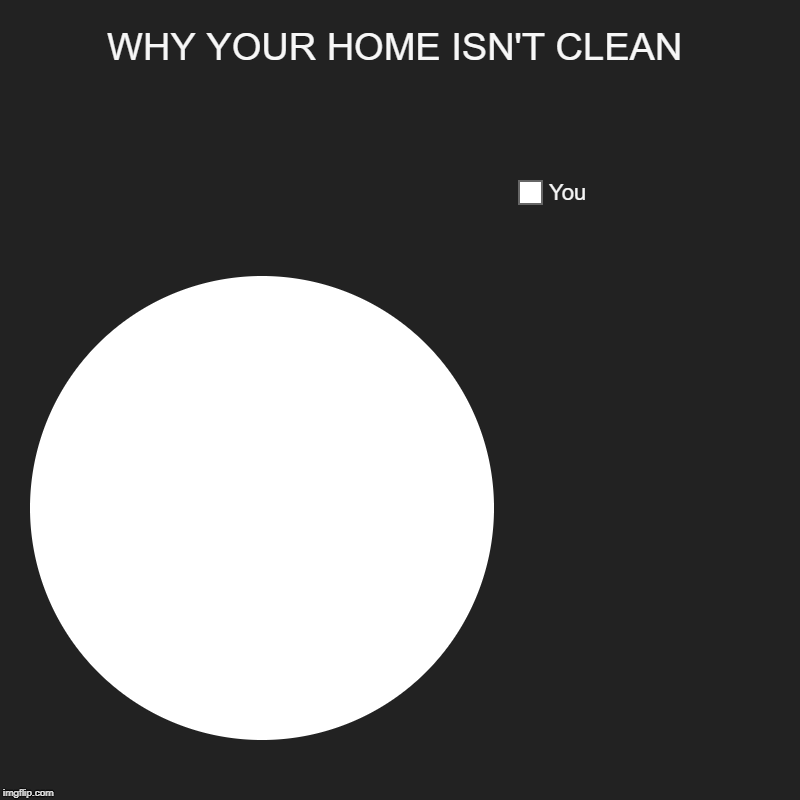 Why Your Home Isn't Clean | WHY YOUR HOME ISN'T CLEAN | You | image tagged in pie charts,cleaning,housework,denial,procrastination,funny memes | made w/ Imgflip chart maker