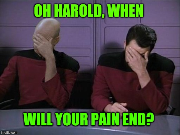 Double Facepalm | OH HAROLD, WHEN WILL YOUR PAIN END? | image tagged in double facepalm | made w/ Imgflip meme maker
