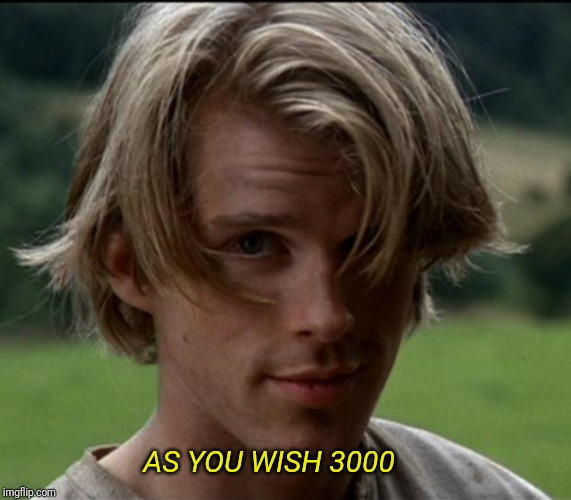 AS YOU WISH 3000 | image tagged in princess bride,i love 3000 | made w/ Imgflip meme maker