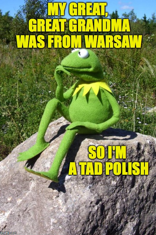 May lightning strike me if amphibian to ya  ( : | MY GREAT, GREAT GRANDMA WAS FROM WARSAW SO I'M A TAD POLISH | image tagged in kermit-thinking,memes | made w/ Imgflip meme maker