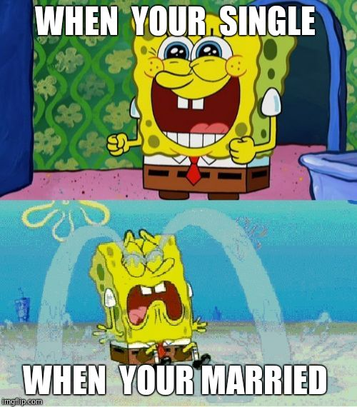 spongebob happy and sad | WHEN  YOUR  SINGLE WHEN  YOUR MARRIED | image tagged in spongebob happy and sad | made w/ Imgflip meme maker