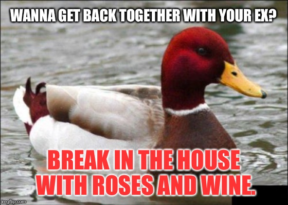 That's one way to communicate that you cannot live without your ex | WANNA GET BACK TOGETHER WITH YOUR EX? BREAK IN THE HOUSE WITH ROSES AND WINE. | image tagged in memes,malicious advice mallard,rose,house,love,break up | made w/ Imgflip meme maker